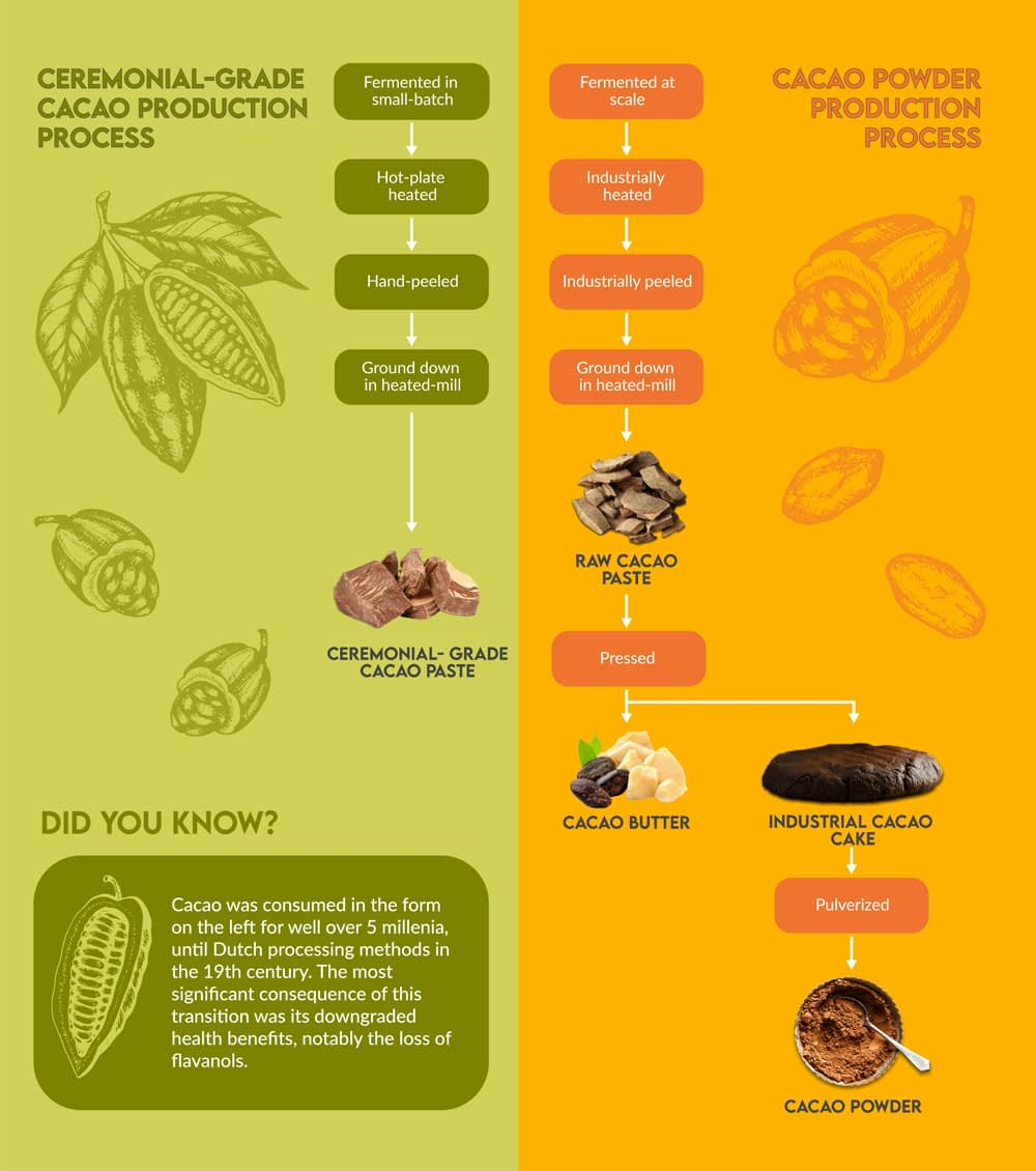 Infographic distinguishing the differences between ceremonial grade cacao and industrial cacao powder.