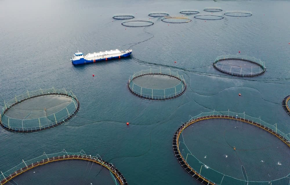 aerial view of fish farm and ship