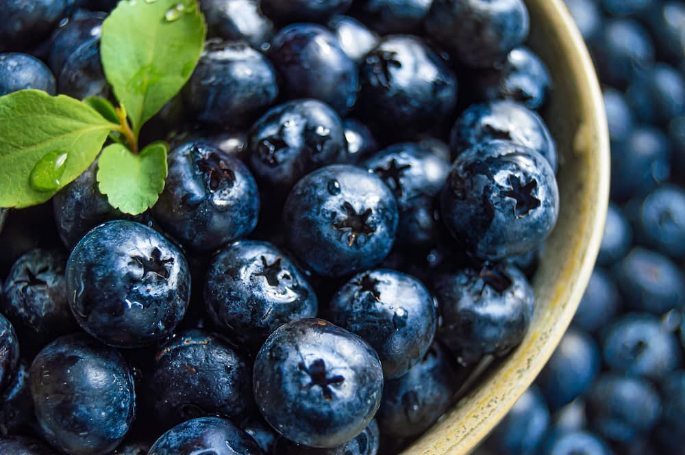 Close up shot of blueberries and a sprig of mint