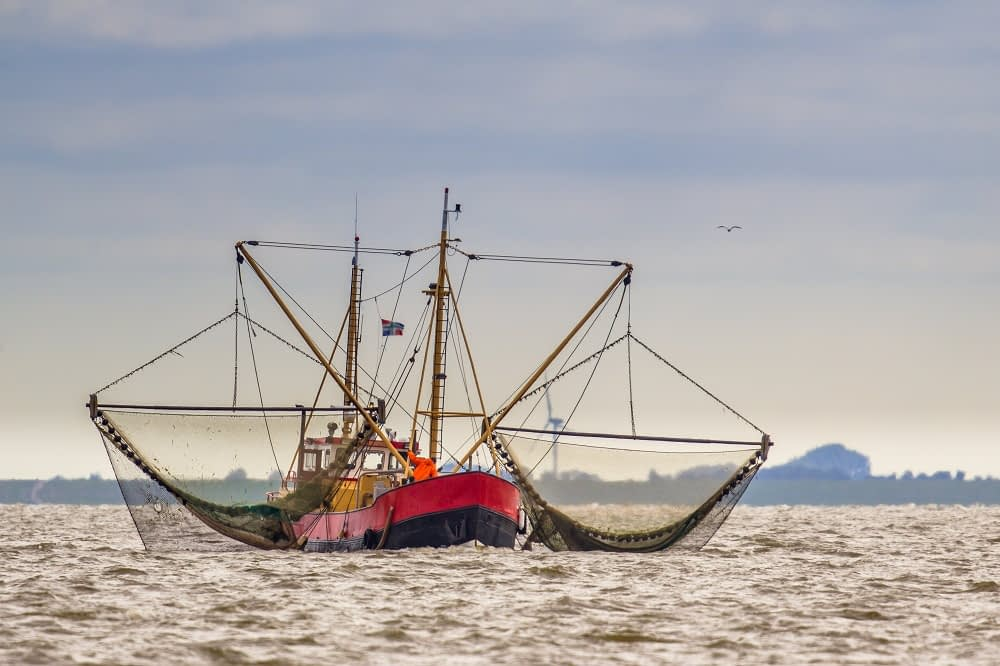 shrimp fishing boat out on water