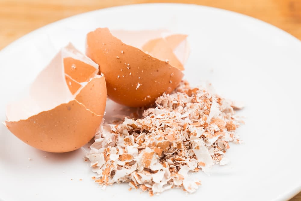 crushed eggshells are a great food scrap for gardens