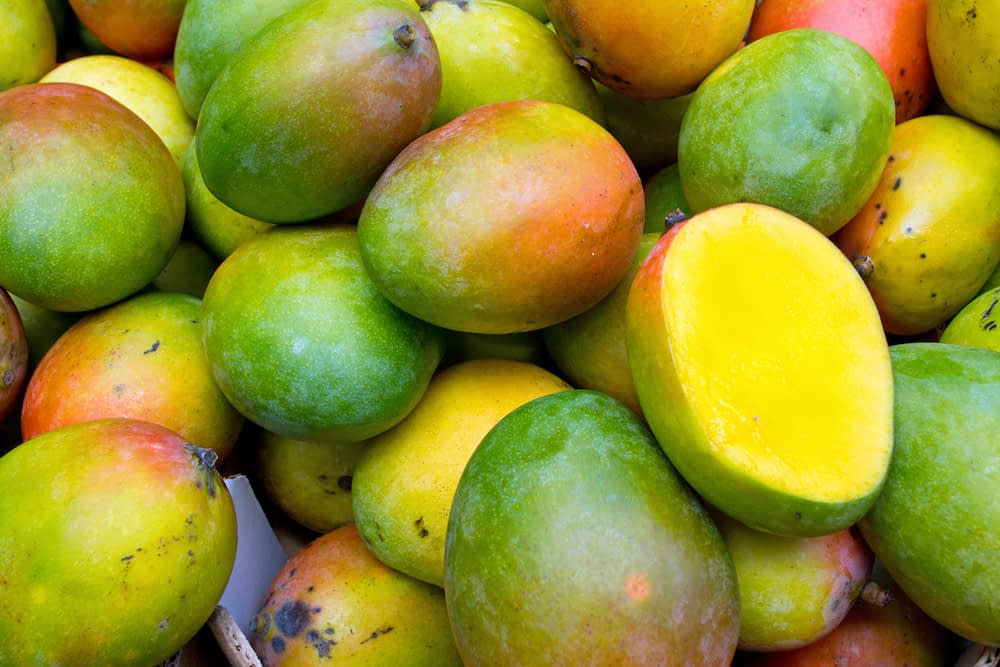 Pile of green and orange mangoes filling the screen