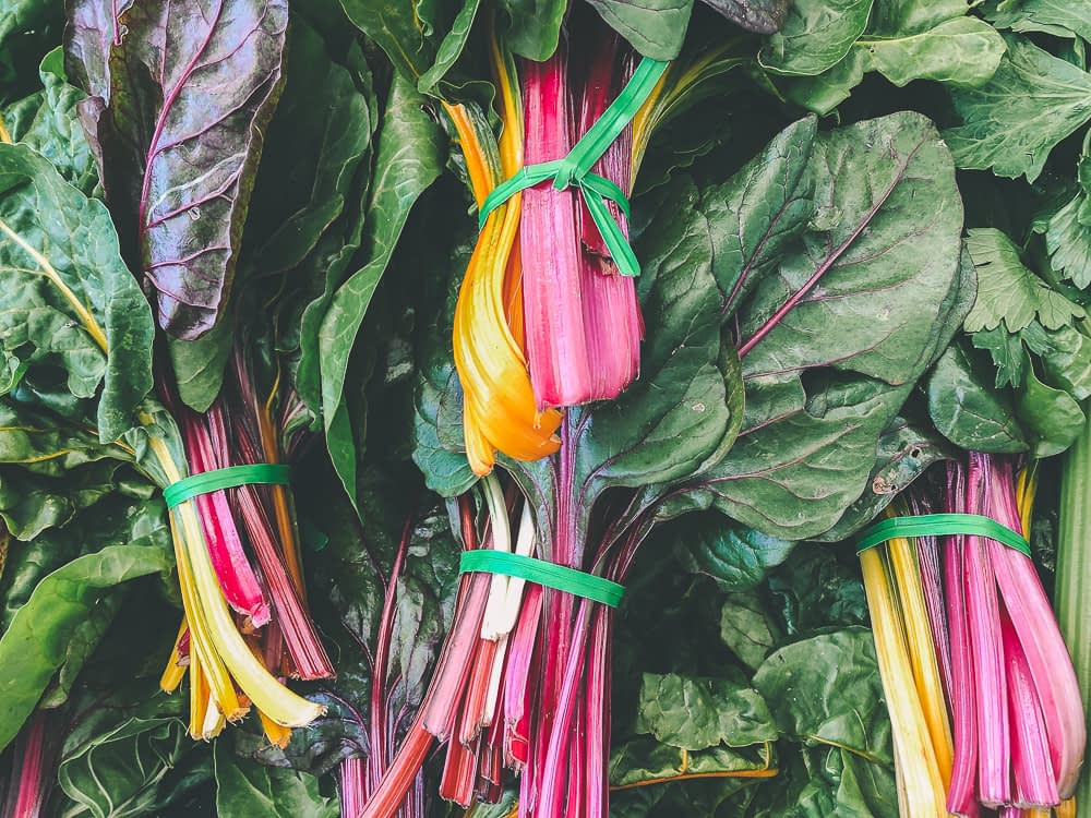 Colorful bunch of swiss chard leaves