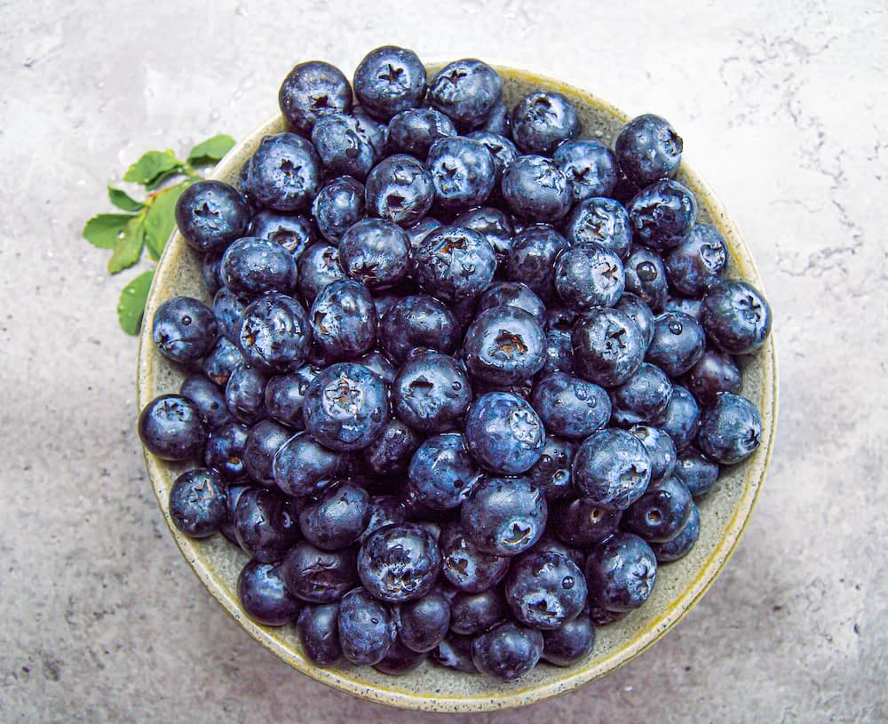 Blueberries in a bowl with a green sprig of leaves on the side, on a white marble counter