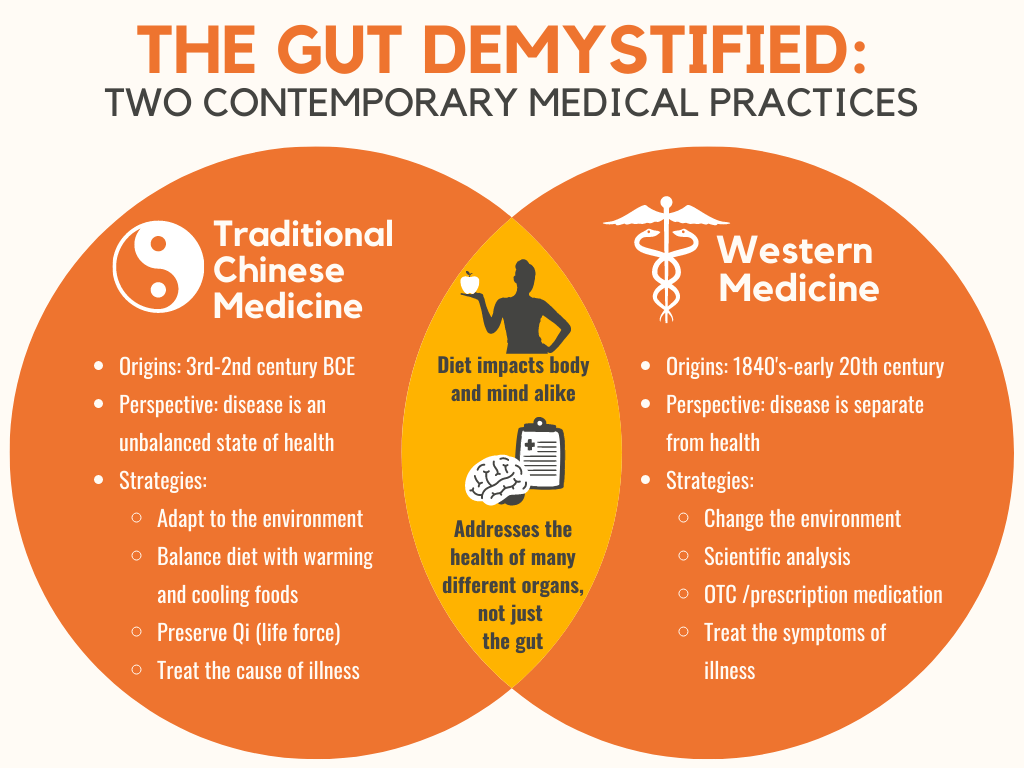 Venn diagram comparing two medical practices, Traditional Chinese Medicine and Western Medicine, on the topic of gut health.
