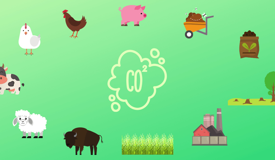 Breaking Down the Environment's Beef with Meat (and Dairy)