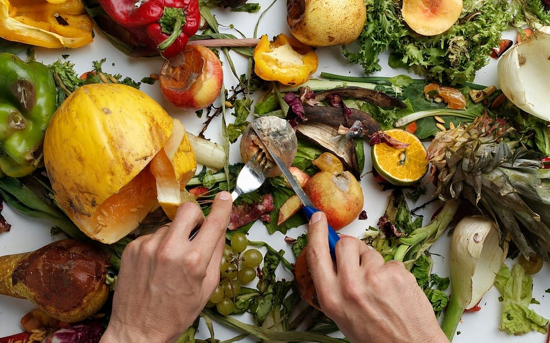 U.S. Food Waste Policy And How It Compares To The Rest Of The World