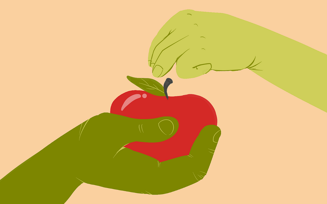 8 Ways to Fight Food Insecurity