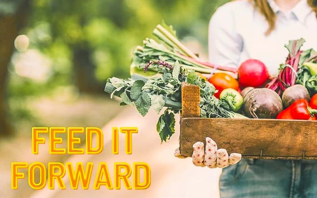 How You Can Impact the World with Your Local Farmers Market