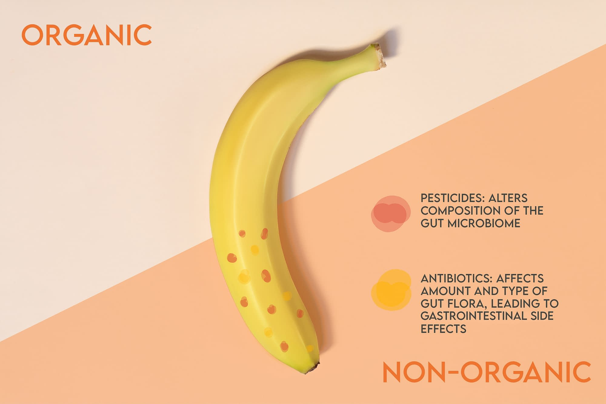 Graphic of banana, with non-organic side showing visible pesticides and antibiotics.
