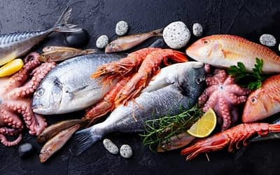 The Secret to Sustainable Seafood