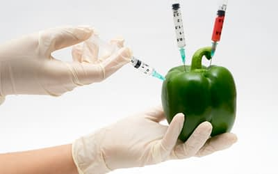 What Really is a GMO?