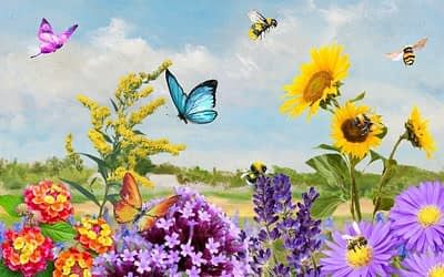 The Complete Guide to Bee and Butterfly Hospitality