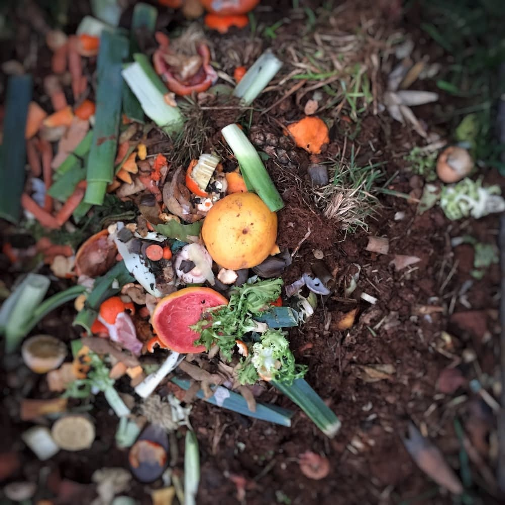 A healthy compost bin full of vegetable, fruit, and yard scraps