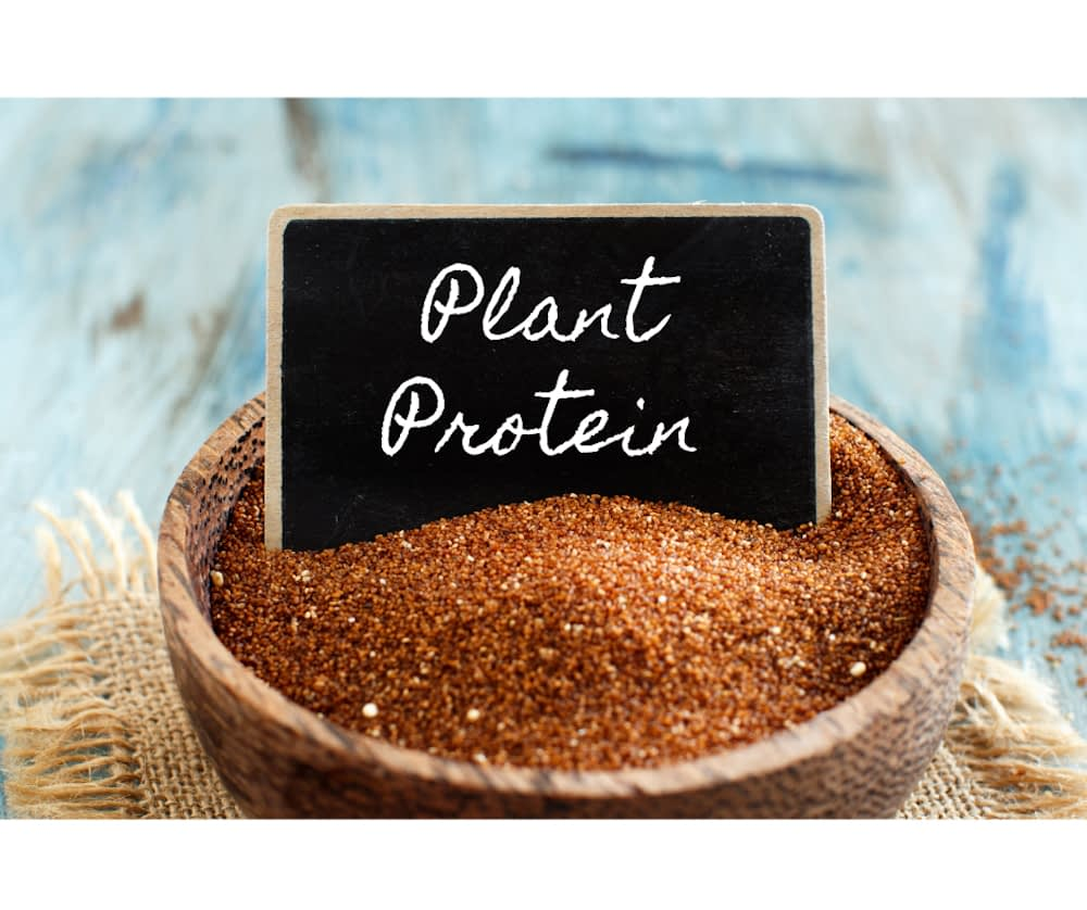Bowl of quinoa with a sign in it that says plant protein